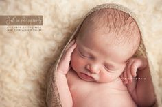 226 Best Newborn Photography Vancouver Jana Photography Images In
