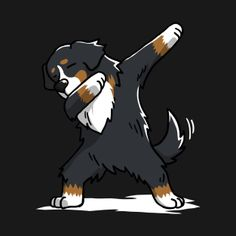 Bildergebnis für bernese mountain dog funny