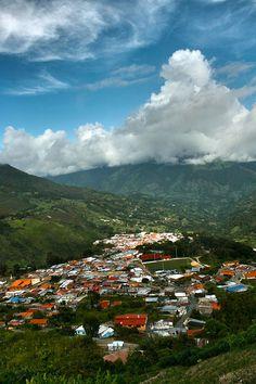 Población de Queniquea del Estado Tachira.