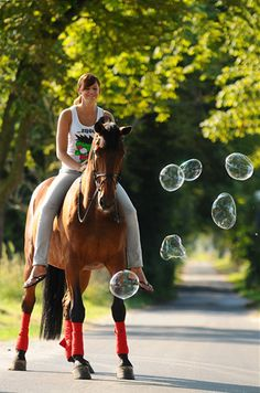 I so want to go out and blow bubbles for my horses,  Traveler and Aadi might snort a bit, Wyatt will try and chase them and Qarma will be on the other side of the dry lot, lol!