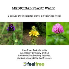 HERBWALKJULY(FB) Cork City, River Park, July 18th, Medicinal Plants, Medicine, Events, Medical, Healing Herbs, Herbal Medicine