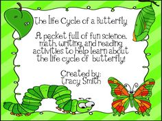 Life Cycle of a Butterfly! Activities for grades K-3! Flipbook, anchor charts, and lots of easy activities to add to your unit!