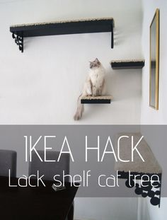Want the best Ikea hacks? Find everything you need to know about making DIY furniture for much cheaper. Save money with these Ikea dresser hacks and more! Diy Pour Chien, Lack Shelf, Diy Cat Tree, Cat Trees, Diy Hanging Shelves, Ikea Shelves, Diy Cat Shelves, Animal Projects, Diy Projects
