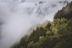 Forest of Norway → Edited with Presetbase Lightroom Presets for Landscape & Travel Photography: Explore over 20 specialized and fully adjustable Lightroom Preset sets that will enhance your photos quickly and easily.