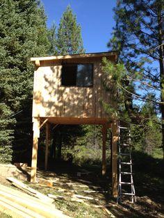Stilt House - Mountain Woman Journals | TrayerWilderness.com