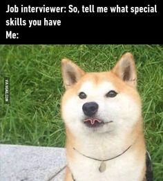 Yes, this is so me. I have no special talents or skills lol