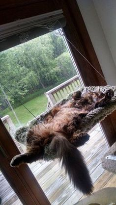 GennGV on Etsy: window cat bed
