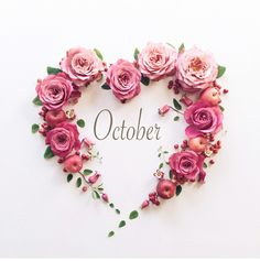 Hello October ♡ A month that will bring all things love, celebrating the new and rebirth. Hello October, Happy October, Seasons Months, Months In A Year, Happy New Month Prayers, September Images, Month Flowers, October Flowers, Birthday Month