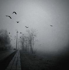 A Requiem |ღஜღ~|cM