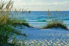 Panama City Beach Florida, Panama City Panama, Pensacola Beach, The Great Outdoors, Paradise, Waves, Sunset, Nature, Photography