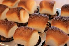 smore cupcakes with giant marshmallows toasted under broiler