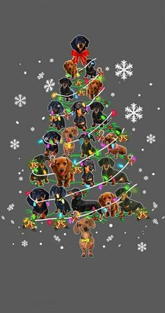 Christmas Scenes, Christmas Dog, Christmas Greetings, Christmas Cards, Dachshund Breed, Dachshund Art, Les Moomins, Knitted Heart Pattern, Kissa