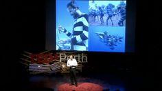 ВИДЕО: Гидрокостюм, который спасет вас от акулы - http://lifehacker.ru/2014/06/10/video-hamish-jolly/