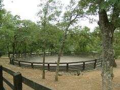 Round pen amidst The trees