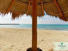 Paradise found at Now Jade Riviera Cancun!