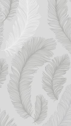 I Love Wallpaper Plume Feather Wallpaper Grey, Silver - Whats Wallpaper, Grey Wallpaper Iphone, Look Wallpaper, Feather Wallpaper, Rose Gold Wallpaper, Cute Patterns Wallpaper, Cute Wallpaper Backgrounds, Pretty Wallpapers, Aesthetic Iphone Wallpaper