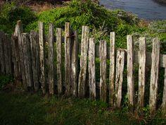 5 Versatile Clever Tips: Backyard Fence Orlando Florida Backyard Fence Art Ideas.Fencing Ideas In Backyard Privacy Fence And Gate.Privacy Fence And Gate. Fence Art, Diy Fence, Fence Landscaping, Backyard Fences, Garden Fencing, Horse Fence, Backyard Privacy, Pallet Fence, Fence Ideas