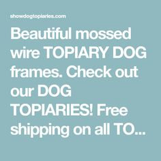 Beautiful mossed wire TOPIARY DOG frames. Check out our DOG TOPIARIES! Free shipping on all TOPIARY DOGS. Now introducing the topiary cat!