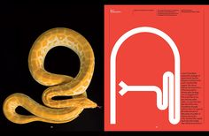The-new-york-times-magazine-exhibition-graphic-design-itsnicethat-1