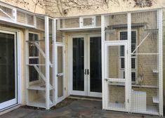 Diy Cat Enclosure, Outdoor Cat Enclosure, Cat Kennel, Cat Run, Cat Playground, Animal Room, Cat Condo, Pet Furniture, Cat Accessories