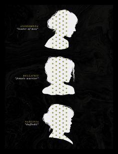 Super cool. Meanings of Andromeda, Bellatrix, Narcissa.