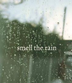 smell the rain