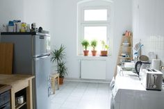 Frühling In Der Küche! Ein Paar Pflanzen Können In Der Küche Für Ein Ganz  Neues