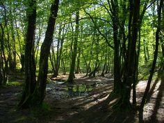 Le Val sans retour en forêt de Paimpont, derrière le Miroir aux fées. Le Val sans retour, Val périlleux ou encore Val des faux amants est un lieu légendaire du cycle arthurien en forêt de Brocéliande ainsi qu'un site renommé de centre-Bretagne, dans la forêt nommée administrativement forêt de Paimpont. Une légende y est attachée, racontée dans le Lancelot-Graal (début du XIIIe siècle), mais elle circulait oralement avant la fin du XIIe siècle. La fée Morgane vit une déception amoureuse avec…