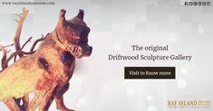 The Original Driftwood Sculpture Gallery #driftwood #gallery #sculpture #Kumarakom https://www.bayislandmuseum.com/places-to-visit-in-kumarakom.html