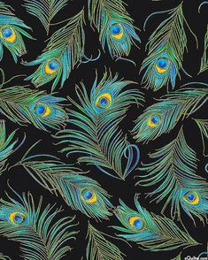 Enchanted Plume - Iridescent Feathers - Quilt Fabrics from www.eQuilter.com