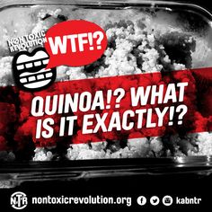 WTF!? Is Up With Quinoa!? We Energies, Your Mouth, What You Eat, Our Body, Eating Well, Quinoa, Healthy Life, Vitamins, Healthy Living