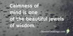 Calmness of mind is one  of the beautiful jewels  of wisdom.