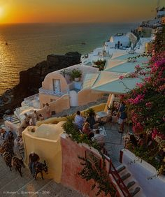 Sunset in Oia, Santorini, Greece What A Wonderful World, Greece Travel, Love Is All, Dusk, Wonders Of The World, Red Roses, All Things, Sunrise, Heaven