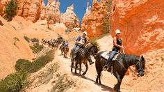 Located in southwestern Utah, Bryce Canyon is known for its unique and colorful rock formations called �hoodoos.� Horseback rides descend 2,000 feet into the canyon where riders can experience breathtaking panoramic views with up to 200 miles of visibility, rock formations, forests and wildlife.