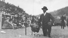 "Floyd Meade trained a huge turkey to walk on a leash of orange and maroon ribbons and brought it to Virginia Tech football games, such as this one, in the early 1920s. He would parade the turkey up and down the sidelines and celebrate a touchdown or spectacular play. The press made a big thing of it, and the football team became known as the ""Gobblers."""