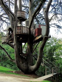 This is really some kind of a treehouse, could have a lots of fun.....