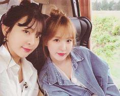 Wendy Red Velvet, Black Velvet, Kpop Couples, Red Velvet Seulgi, Pop Songs, Latest Albums, Her Smile, Girl Gang, Peek A Boos