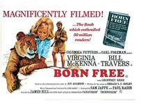 Retail value: Priceless  Enjoy this autographed poster from the classic film 'Born Free'. This copy has been autographed by actress and Born Free Foundation founder, Virginia McKenna.  The poster is unframed.
