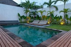 Swimming Pool Design Ideas is based on what can be done with the space in the backyard or garden. A backyard that is too big can be cramped; backyard big Beautiful Minimalist Swimming Pool Design Ideas In Backyard on Small Space on Budget Plants Around Pool, Landscaping Around Pool, Pool Plants, Tropical Landscaping, Backyard Landscaping, Landscaping Ideas, Tropical Plants, Tropical Gardens, Landscaping With Palm Trees