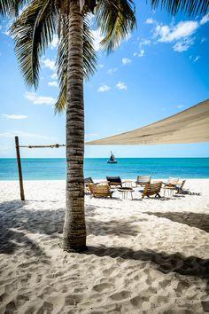 Mozambique Let Acirc Acute S Go Mozambique Beaches Africa Maputo Mozambique Beaches, Maputo, Shell Beach, Beach Fun, Beautiful Beaches, Beautiful World, Places To Go, Vacation, Adventure