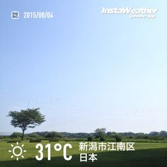 おはようございます! 雲ひとつない空~♪