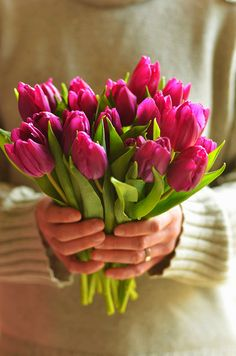 I've just picked some fresh flowers for our rooms...............
