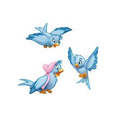 cinderella birds