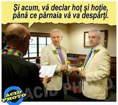 Funny Memes, Jokes, Funny Pictures, Funny Pics, Haha, Humor, Comics, Romania, Funny Things