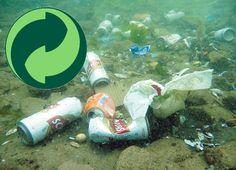 Rio Sul: Questões ambientais