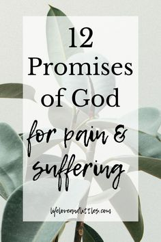 Bible Verses about Pain