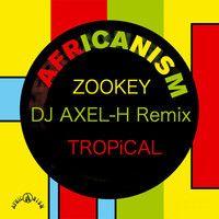 Africanism - Zookey ( Dj Axel-H Remix Tropical 2K14 )