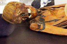 Scythian mummy with tattoo and matted locks.  I always love when ancient tattoos are preserved!