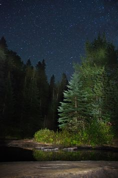 The great outdoors is what I love about Canadian summers. A ton of wonderful parks to explore. Algonquin Park, Ontario, Canada - camped here years ago, it was beautiful! Nocturne, Sky Images, Algonquin Park, Canada Travel, Night Skies, The Great Outdoors, Beautiful Places, National Parks, Scenery