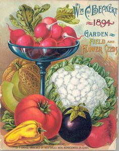 William C. Beckert's Garden Field and Flower Seeds 1894